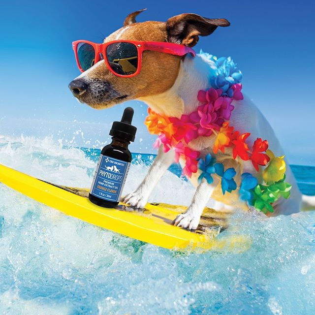 Keep cool this July 4, get 20% off all our products right now! - CBD Unlimited