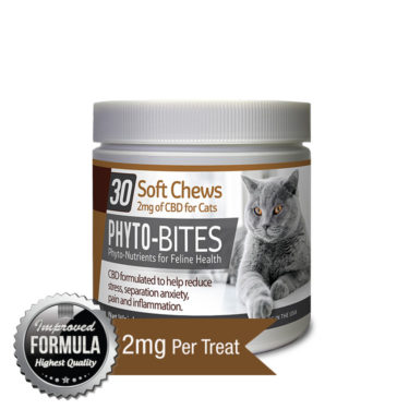 CBD soft chews for pets and CBD cat treats for pain