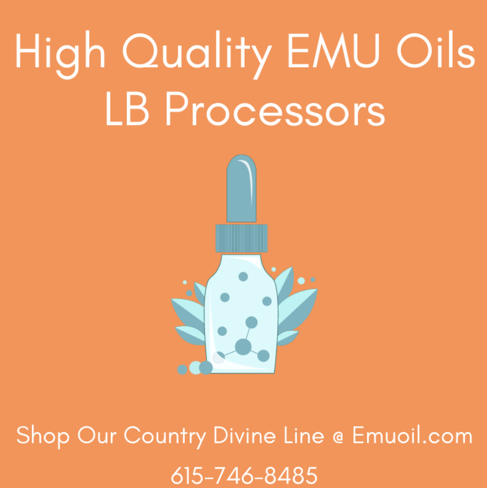 Featured Findit Member LB Processors Increase Online Presence 404-443-3224